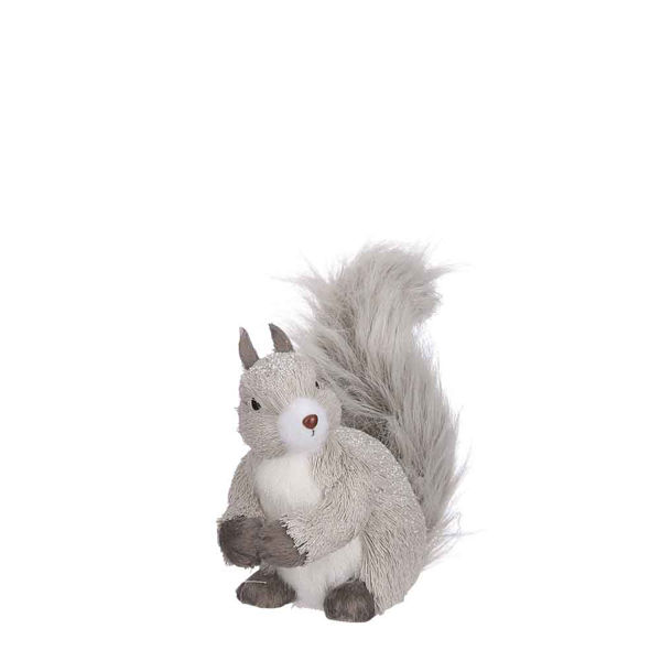 285776-Ecureuil gris 24cm